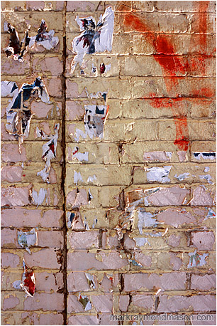 Abstract photograph of sunlit scraps of paper on a garishly painted brick wall
