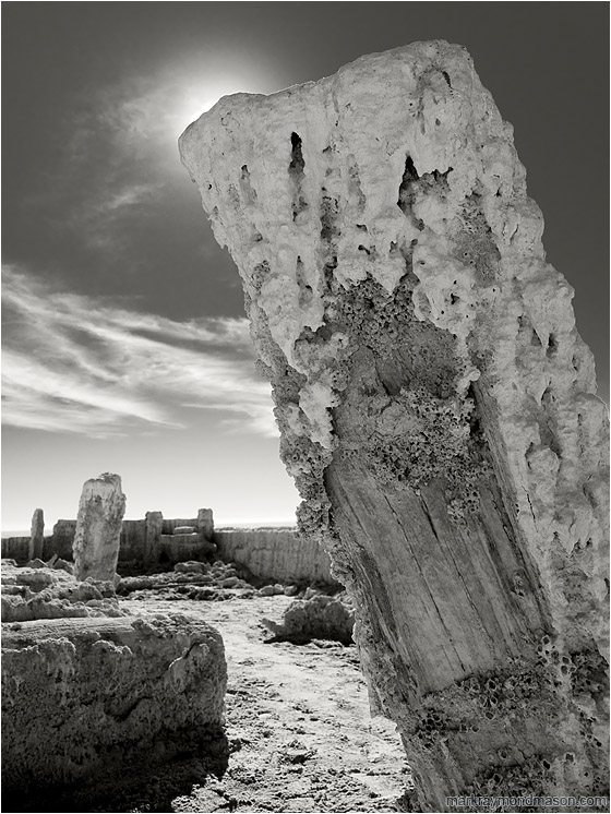 Two Salted Pillars (B&W): Salton Sea, CA, USA (2011) - Fine art B&W photograph showing bridge piers crusted in salt and barnacles against a dramatic cloudy sky