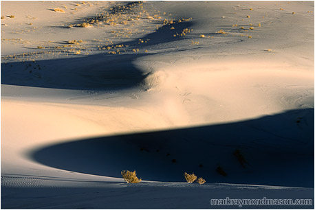Abstract photograph of sand dunes and wild desert shadows