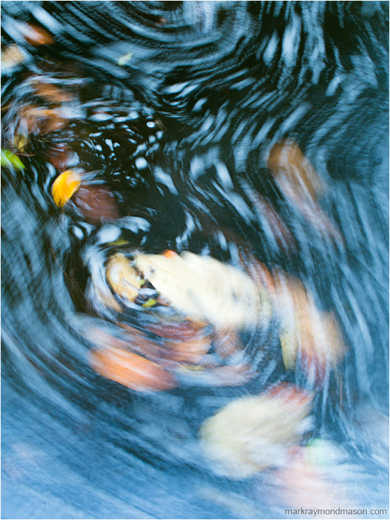 Deep Water, Leaf Paths: Near Montezuma, Costa Rica (2013-01-07) - Abstract impressionist photo showing the blurry paths of leaves as they circle in the dark water of a mountain creek