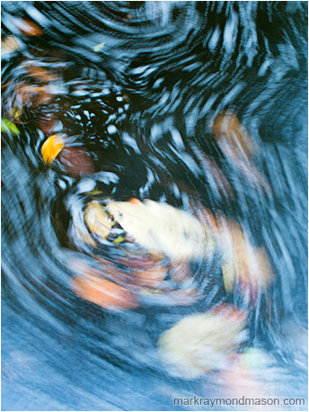 Abstract impressionist photo showing the blurry paths of leaves as they circle in the dark water of a mountain creek