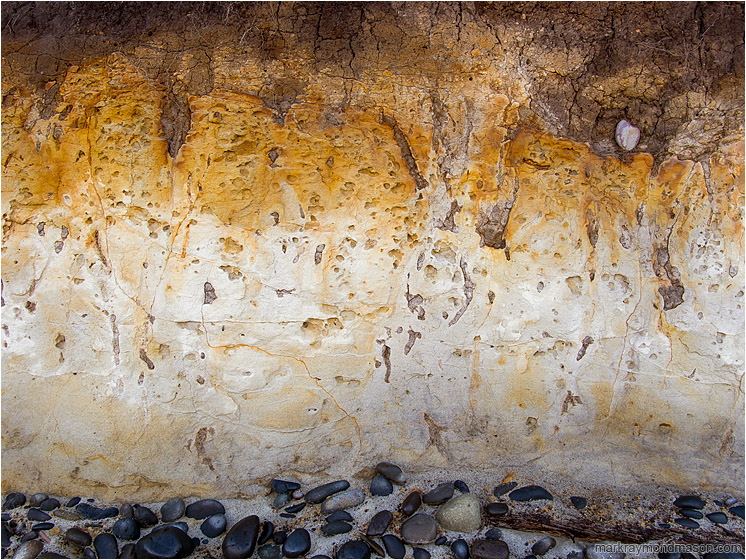 Patina Cliff: Carl G Washburn Park, OR, USA (2015-10-21) - Fine art photograph of orange and red patina over a compact mud seaside cliff