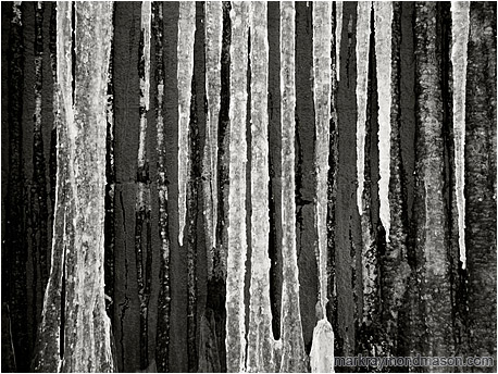 Fine art black and white photo of white icicles flowing down a dark, charcoal coloured concrete wall