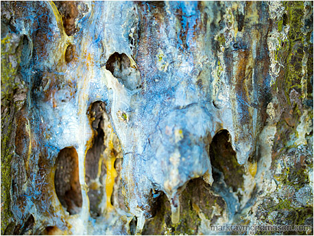 Fine art macro photograph showing textures and colours in a mass of hardened pine sap