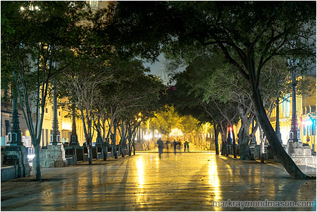 Fine art photo showing the popular Paseo del Prado at night, with blurry walking figures, shiny concrete, and the Capitol building through a gap in the trees