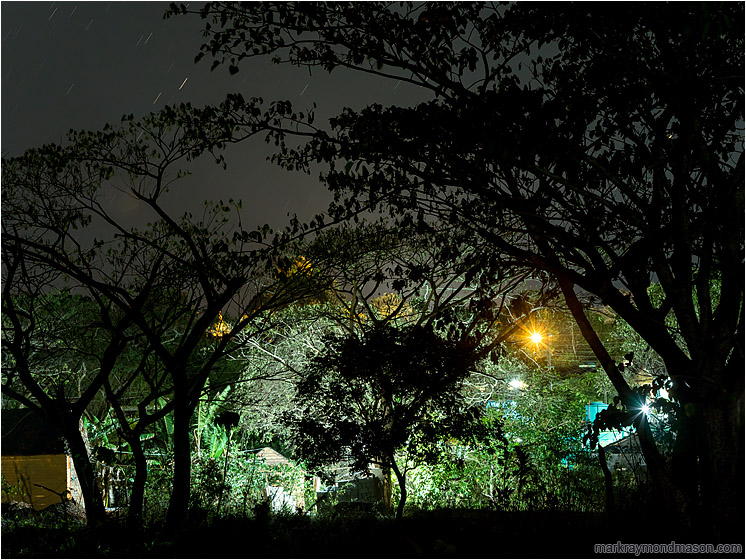 Arching Trees, Town Lights: Vinales, Cuba (2017-02-23) - Fine art photograph showing streetlights shining through a silhouetted forest at the edge of the city